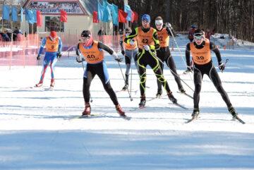 Вологодчина готовится к фестивалю лыжного спорта «Сямженский марафон»