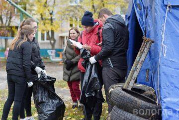 Вологжане помогут бездомным животным, участвуя в проекте «Чистые игры»