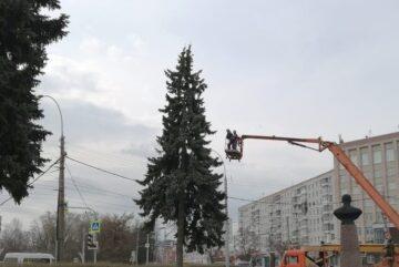 Санитарную обрезку елей у памятника Ильюшину провели в Вологде