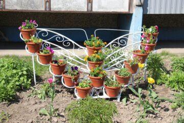 В Череповце начали принимать заявки на участие в конкурсе «Цветущий город»